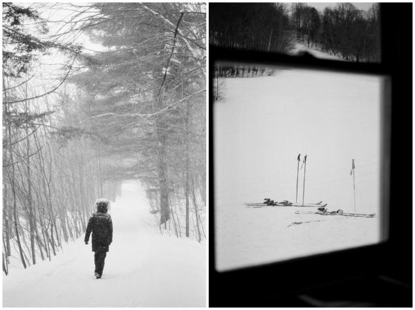 lauren ski